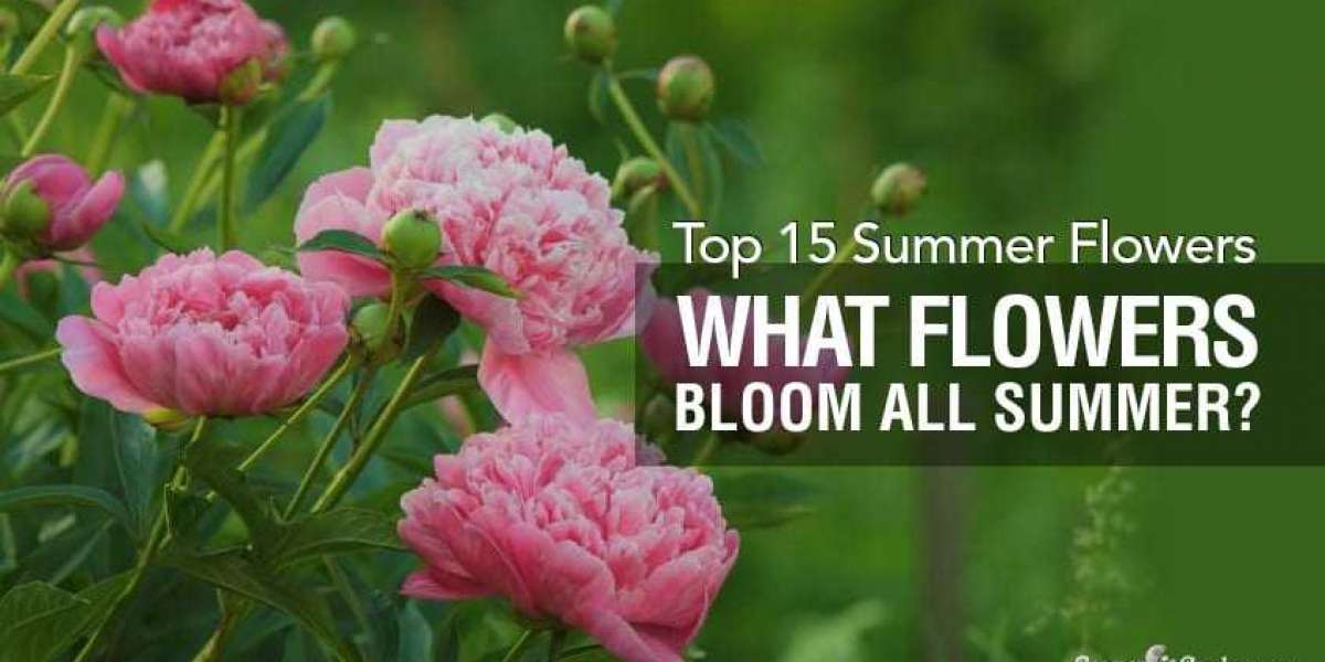 Top Summer Flowers