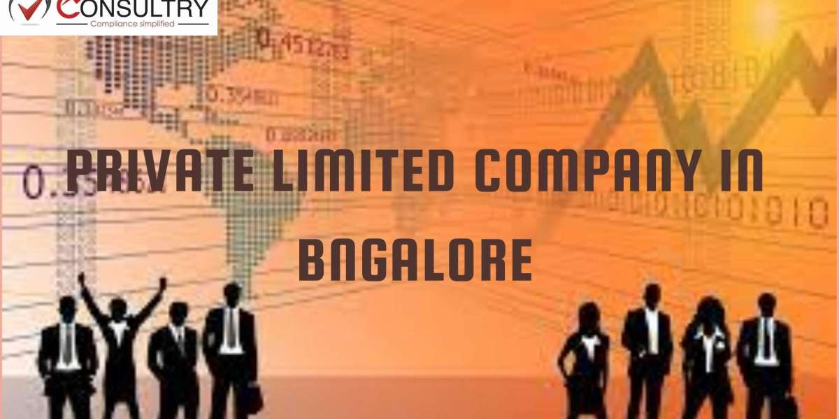 Auditing Requirements of Private Limited Company in Bangalore