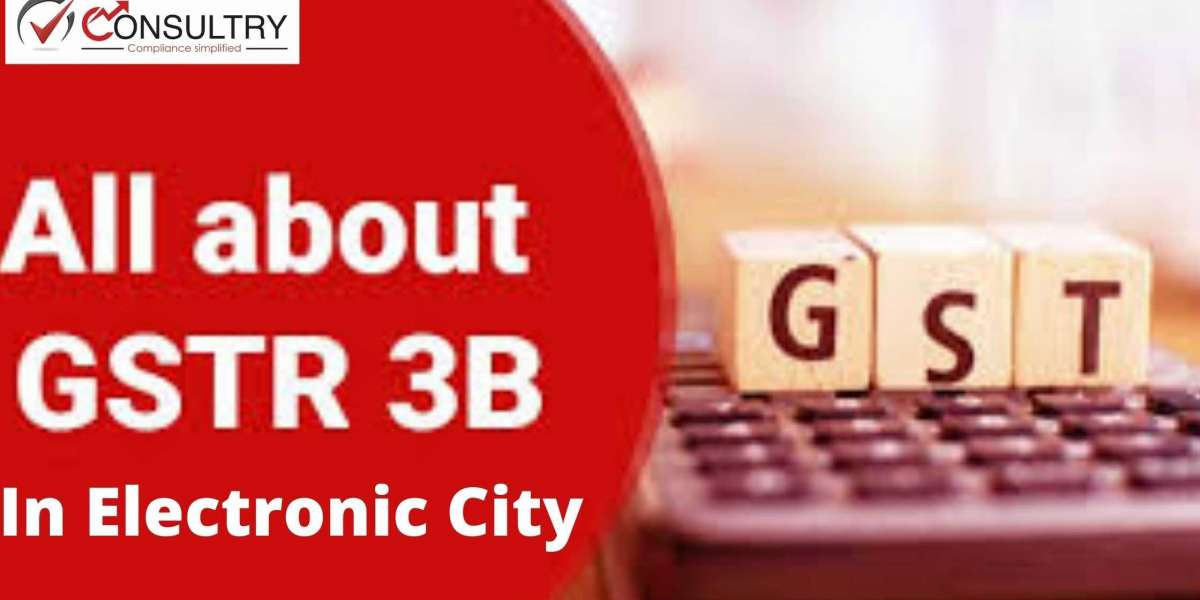How to Resolve Error in GSTR-3B in Electronic City